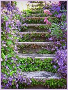 Bohemian flower stairs