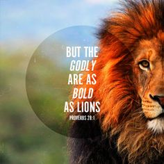 Oh wow got excited when I saw this after reading arise lioness love his so Much Scripture Quotes, Words Quotes, Bible Verses, Lion Bible Verse, Scriptures, Prayer Quotes, Qoutes, Sayings, Lioness Quotes