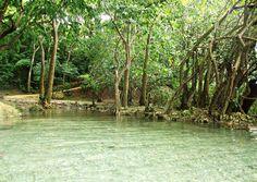 Parque Mirador Manantiales del Cachón de la Rubia, Santo Domingo Este, R.D.