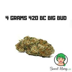 Medical Marijuana, Cannabis, Bud, Herbs, Link, Herb, Gem, Eyes, Spice