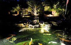 Koi pond lighting ideas Led Home Page Garden Accent Lightingoutdoor Lightinglighting Ideasponds Backyardkoi Stevenwardhaircom 554 Best Koi Pond Ideas Images In 2019 Backyard Ponds Koi Ponds