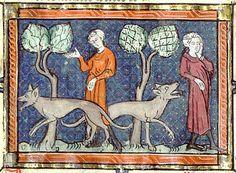 Medieval Bestiary : Wolf Gallery