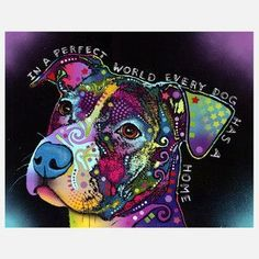 In A Perfect World, Every Dog Has A Home.   ...........click here to find out more     http://googydog.com