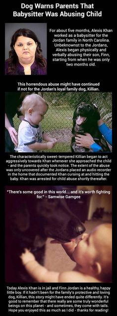 This is inspiring..... Dog warns parents that babysitter was abusing child. Dogs are just amazing!