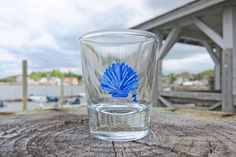 Hand Painted Shot Glass Nautical Shot Glass by PaintedbytheShore