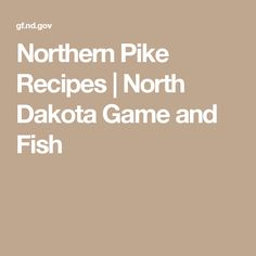 Northern pike recipes great fish recipies pinterest for North dakota game and fish
