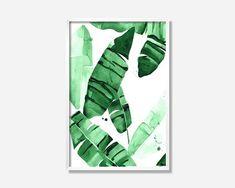 20 x 30 Beverly IV tropischen Banane grün Palme von THEAESTATE