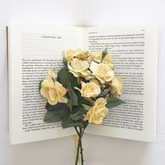 """dxear: """"There is no friend as loyal as a book. """""""