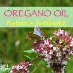 Oregano Oil: Nature�s Antibiotic
