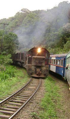 Trem da Serra do Mar: Curitiba e Morretes