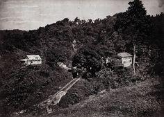 Fontaine Didier Absalon, Martinique, ca 1898