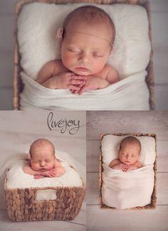 Newborn Photography   LiveJoy Photography   Oregon