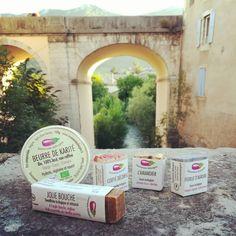 Savonnerie Aubergine Karité, savon, shampoing solide, dentifrice solide, #teamsavonsaf Cactus, Instagram Posts, Soap Shop, Headdress, Eggplant, Green