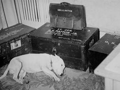 Willie mourns after Patton's death