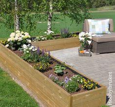Da har solen og varmen kommet, og jeg nyter å kunne holde på ute i hagen. Den nye blomsterkassen har blitt fylt med blomster. Det er...
