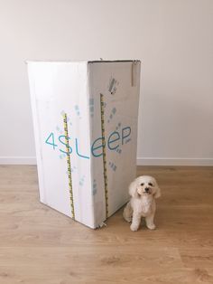 On My Radar :: 4Sleep Mattress http://www.thecollegeprepster.com/2015/08/on-my-radar_21.html 4Sleep.com sent me an email earlier this year but we weren't ready to upgrade our mattress. Our bedroom now fits a bigger bed so a bigger mattress was in order! 4Sleep sent a mattress (made in America!) for us to test out. I was skeptical about a mattress in a box, but it's amazing. And way fun to open!!! It feels 400x more comfortable than the old mattress + topper we had.