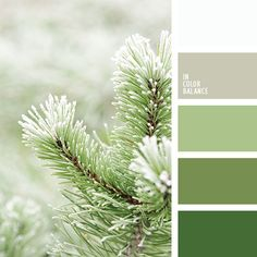 Subtle shades of mint and gray-blue perfectly with the muted pastel pink. This palette is well suited for the decoration of the wedding.
