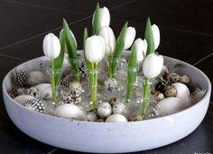 Afbeeldingsresultaat voor bloembollen schelpenzand