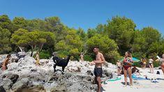 Dolores Park, Travel, Balearic Islands, Viajes, Destinations, Traveling, Trips