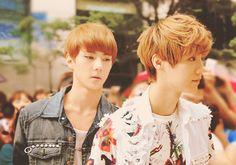 Sehun & Luhan of EXO.