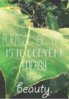 """""""Some days it seems to me like the purpose of life is to convert energy into beauty.""""  - Hank Green (x)"""