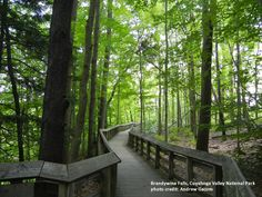 Path to Brandywine Falls, Cuyahoga Valley National Park (Sagamore Hills, OH)