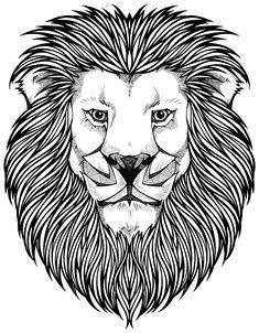 Coloring Page/ Lion