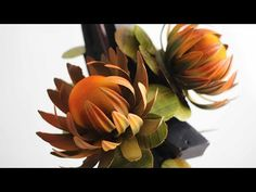 Chocolate Sculptures, Homemade Chocolate, The Creator, Display, Youtube, Plants, Floor Space, Chocolate Art, Billboard