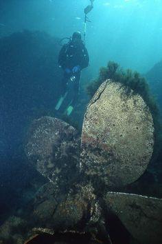 Diving Black sea, Diving Sunny beach, Diving Nessebar, Diving Ravda, Diving Bulgaria