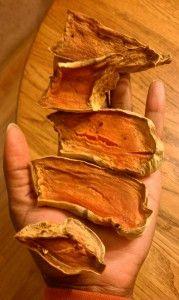 Sweet Potato Chews [Dog Treat Recipe]