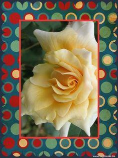Viel Spaß mit den Bildern. Sie finden auf dieser Seite lizenzfreie, weil von mir selbst fotografierte und verschönerte Bilder, kostenlos zum Download. https://www.facebook.com/kostenloseFotosBilderLegakulie http://kostenlose-fotos-bilder-sprueche-legakulie.de/ #beautiful #wow #nice #nature #picture #flowerpicture