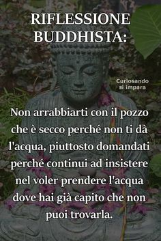 Il pozzo secco Words Quotes, Wise Words, Life Quotes, Favorite Quotes, Best Quotes, Cogito Ergo Sum, Magic Words, Single Words, Osho
