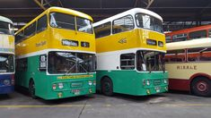 Buses, Glasgow, Busses