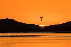 My Struggle, Going Away, Thesis, Happy Life, New Zealand, Tourism, Cruise, Explore, Fresh
