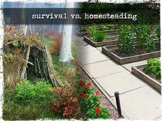 SHTF, survival, survival skills, how to survive, bug out bag, bushcraft, prepper, prepping, survival gear, homestead