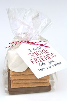 I need S'more Friends like you gift idea on { lilluna.com }