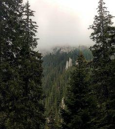 Varf de munte pierdut in ceata sub.