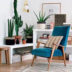 Tenha sempre mais plantas em casa! #plantas #verde #interior #arquitetura…