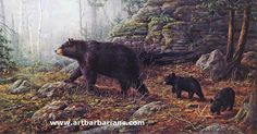 zachwildlifeart.com | Wildlife art prints plus original paintings with a wide selection from ...