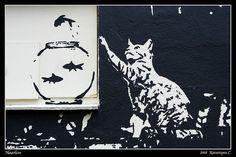 Street Art, Haarlem, Holland