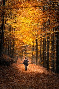 Fotografia Going Home de Nuno Trindade na 500px