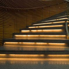 LED Strip Lights Illuminate a Stairway