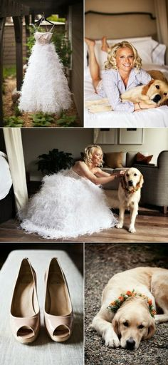 note to self, take pictures with my dog in my wedding dress:))