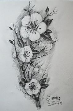 black and white cherry blossom photography - Google Search