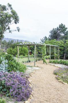 'n Waterwys lushof van vetplante en fynbos Sidewalk, Water, Plants, Gripe Water, Side Walkway, Walkway, Plant, Walkways, Planets