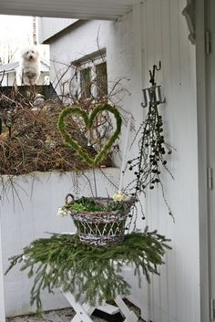 love the branches under the basket and the cute pooch