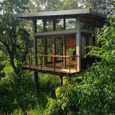 #treehouse #beauty #tinyhouse