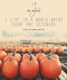 October  #autumn #october #pumpkins #jeans #flannelshirts #hoodies #pumpkinspicelattes