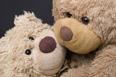 teddy bear picture for desktops, 2684 kB - Horton Walls