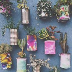 Latas + cor + plantinhas =